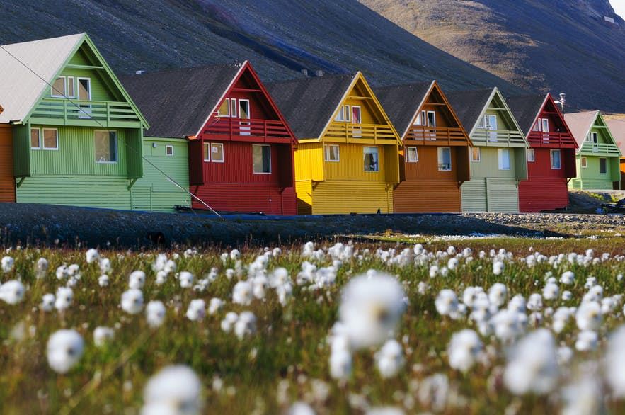 A Guide to Svalbard