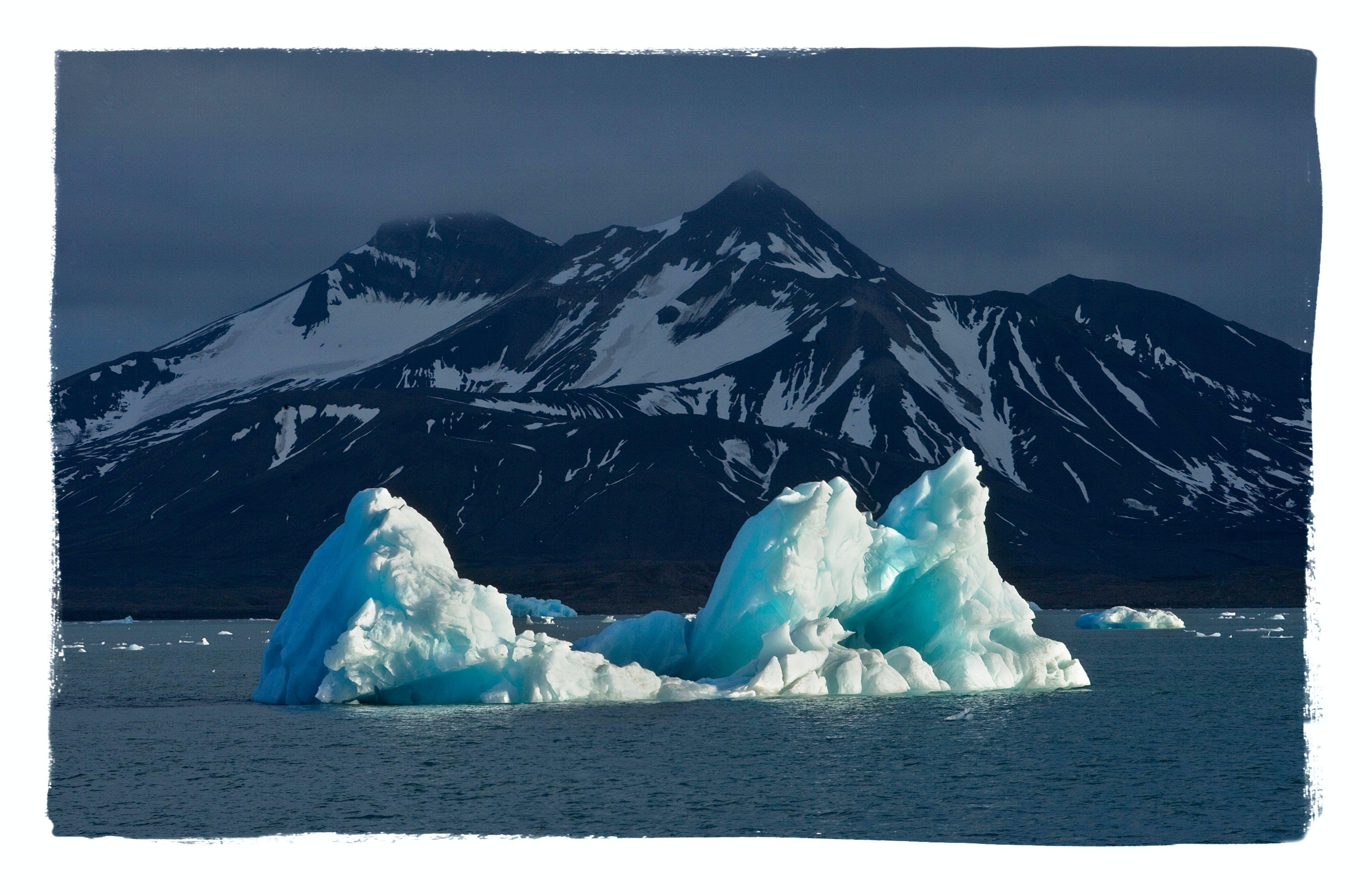 Arctic Spitsbergen Evening Cruise: Tommy Simonsen