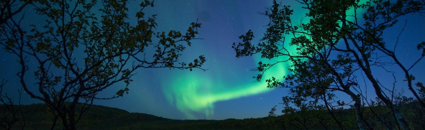 Clear night aurora