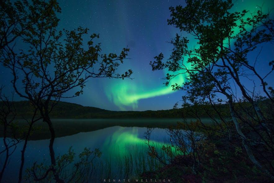 Aurora  Season:  When,  Where  and  How?