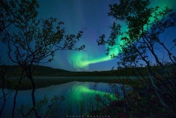 aurora-web-wm_DSC3958-2.jpg