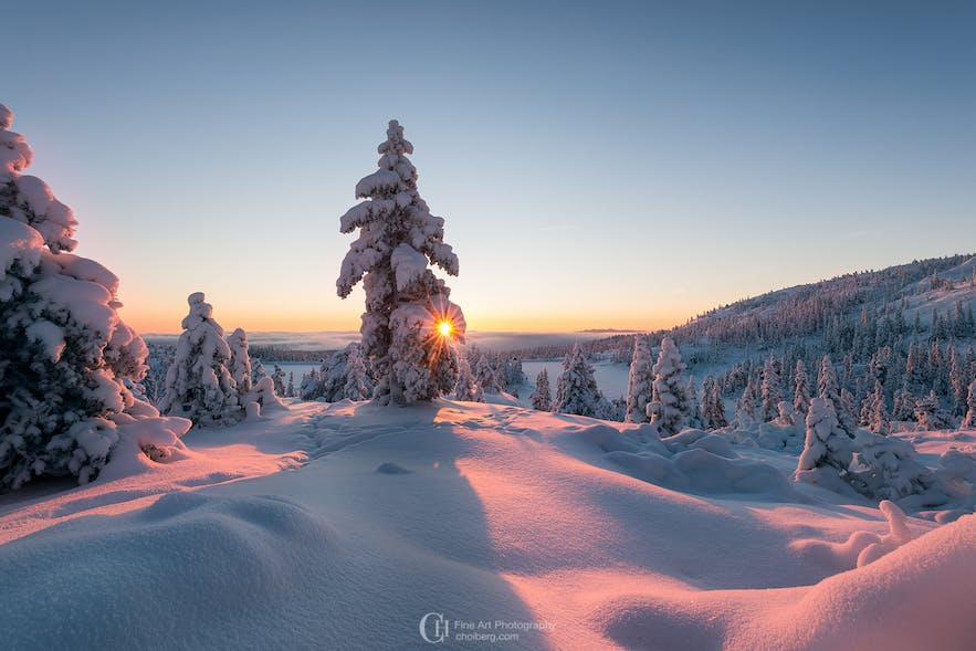 Winter Sunrise in Kongsberg