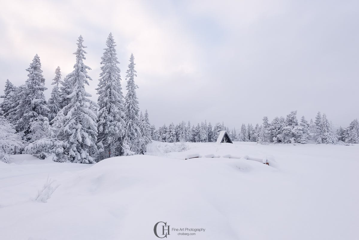 Why You Should Visit Norway During Winter