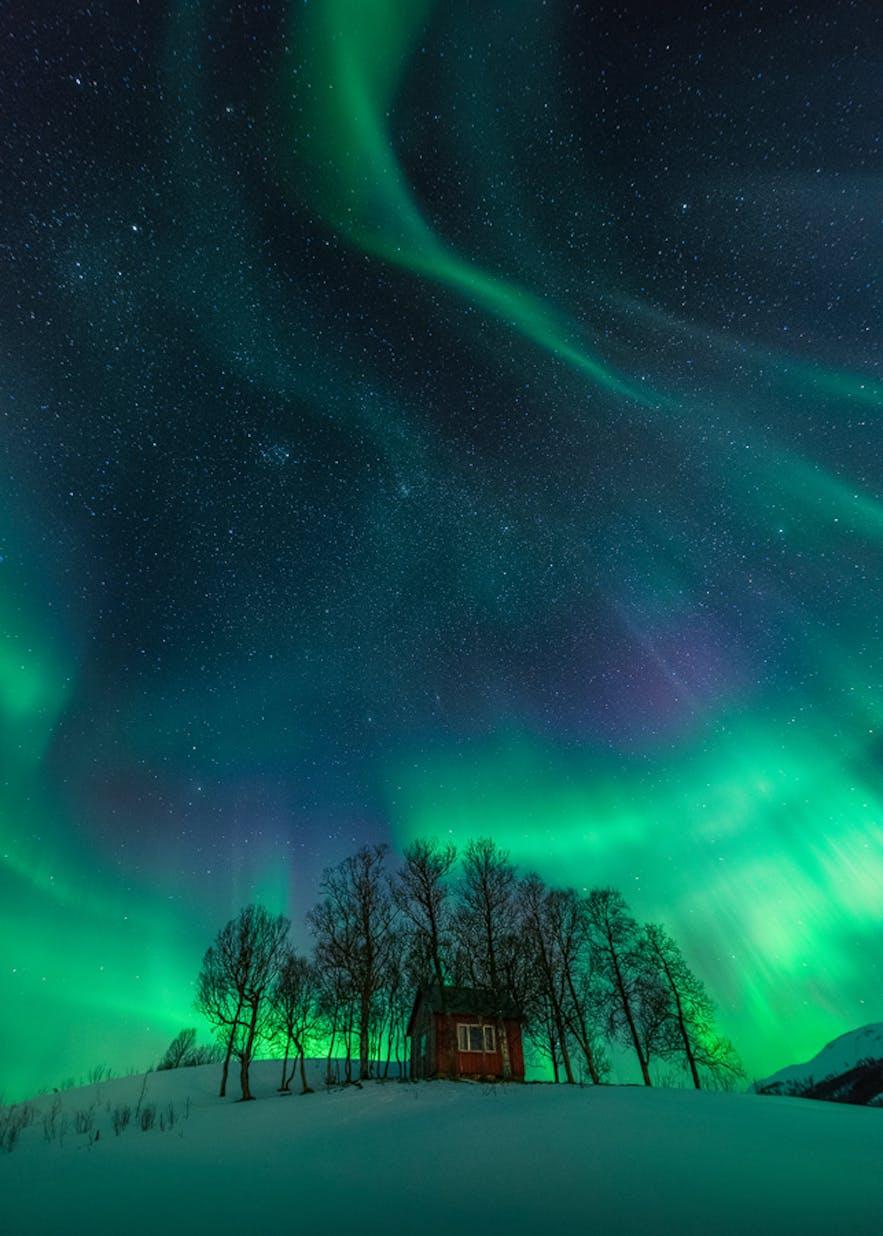 Copyright: Stian Klo & Arild Heitmann - www.lofotentours.com
