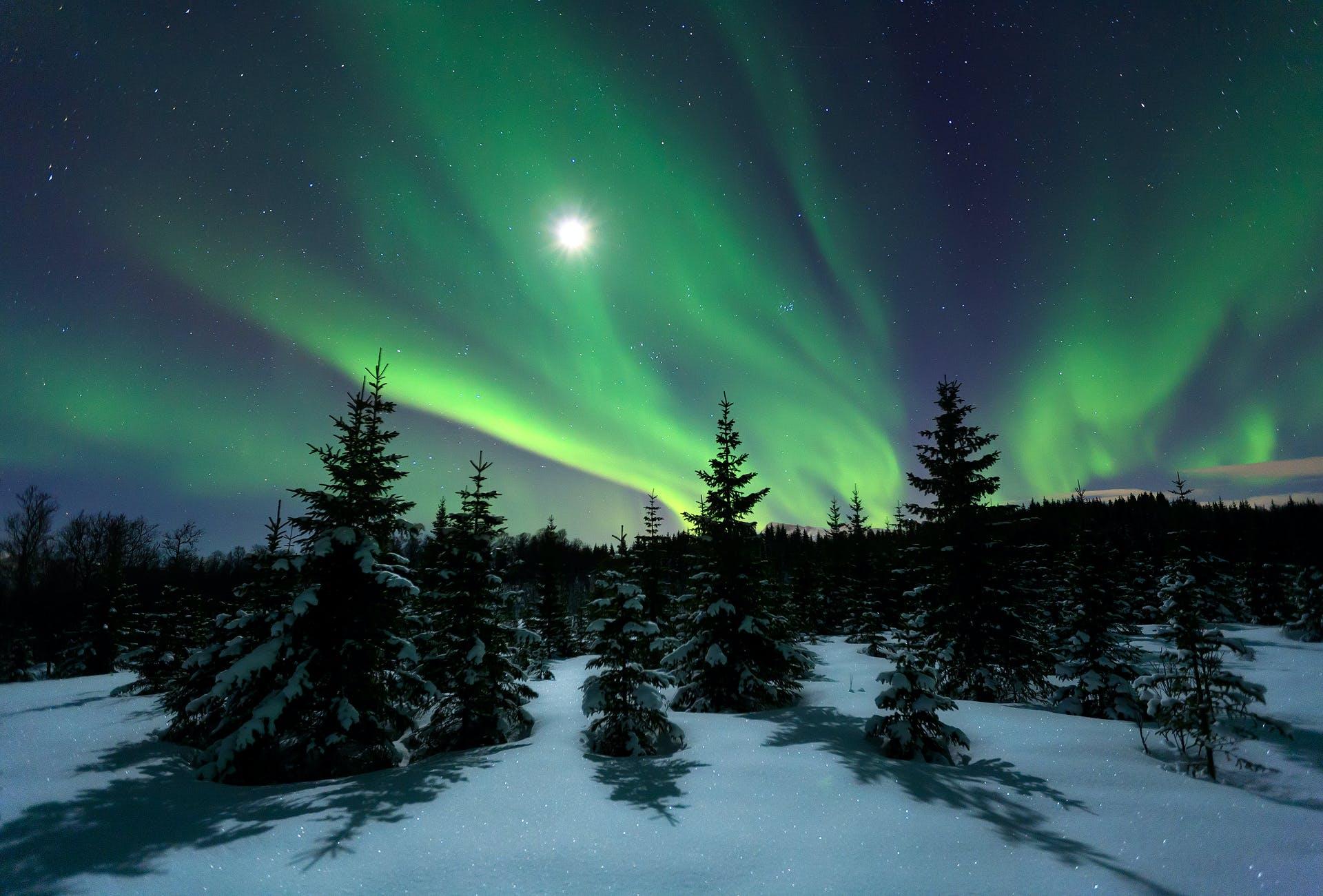 Winter_night_hires.jpg