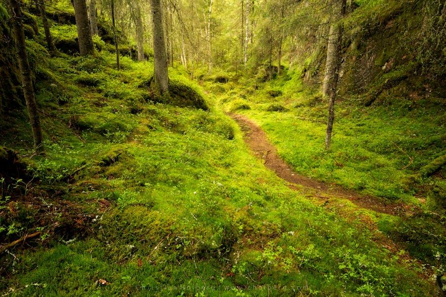 Trollfoss-hike