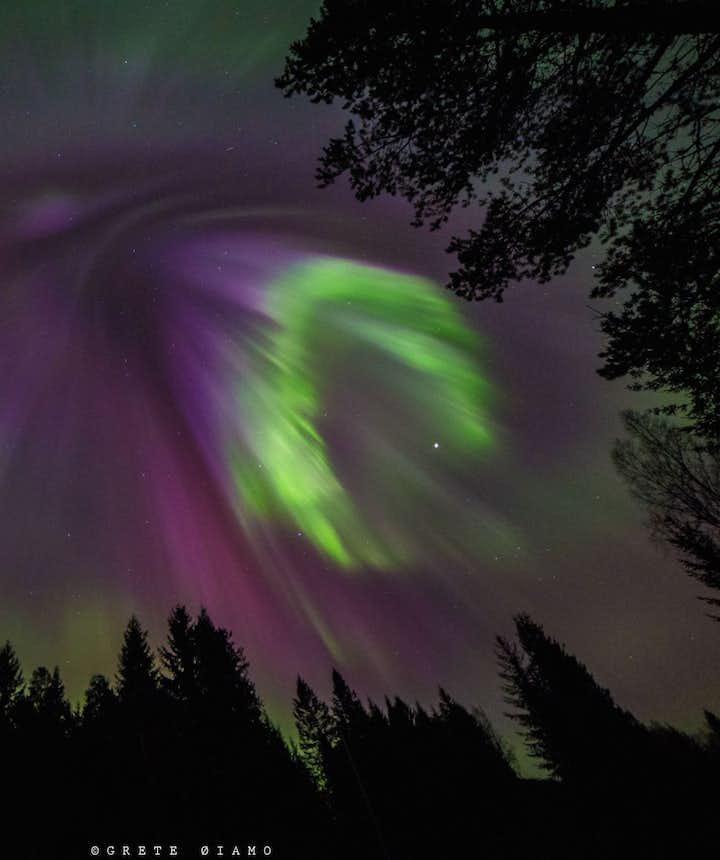 northern lights trondheim