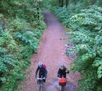 Forest to Fjord Bike Tour