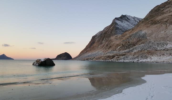 Discover Lofoten in Winter