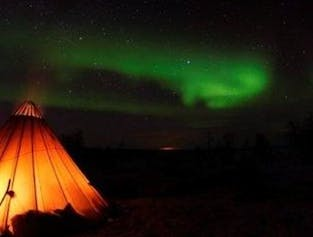 Reindeer Sledding & Northern Lights | Overnight Tour