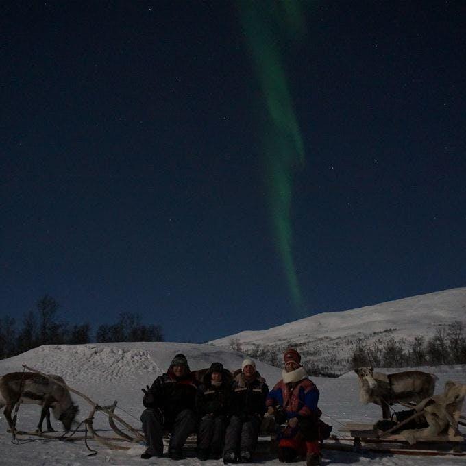 Northern Lights and Reindeer Sledding