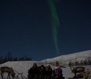 Northern Lights and Reindeer Sledding