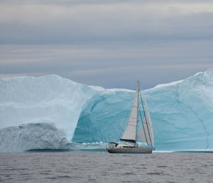 8 Day Svalbard Sailing Expedition