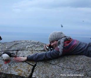 Round Trip to Runde Bird Island   Alesund Tours