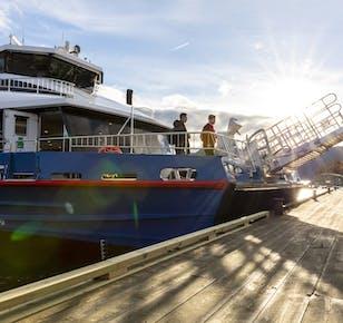 Preikestolen Autumn Hike and Lysefjord Cruise Guided Tour