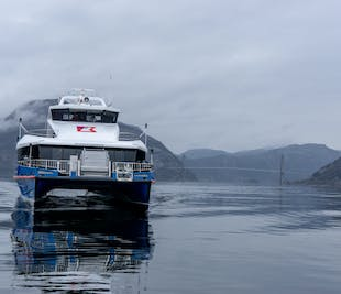Preikestolen Winter-Spring Guided Hike and Lysefjord Cruise